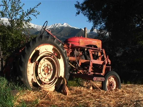 A tractor sits in a wooded area Stock Video Footage