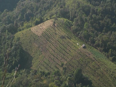 An aerial view of a farm from high above on a hillside Stock Video Footage