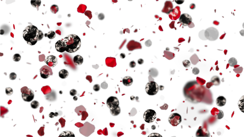 Rose petals and diamonds Animation