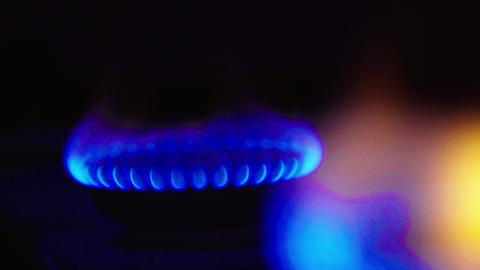 Fire in a gas stoker on a gas stove Live Action
