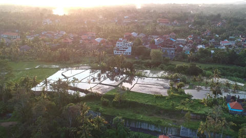 flight at sunset over Ubud during a picturesque sunset, the sky is reflected in Live Action