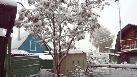 First snow in October Live Action