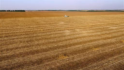 Flight over harvester cropped sunflowers field HD aerial video. Combine unloads Footage