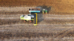 Harvester unloads sunflowers seed into farm vehicle truck 4k video aerial field Footage