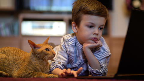 Funny child with kitten using a laptop at home Live Action