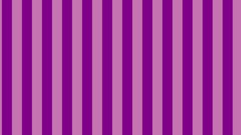 縦のストライプ 紫 線太い ループ CG動画