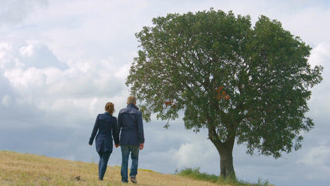 Romantic couple holding hands, walking life journey together, kissing under tree Footage
