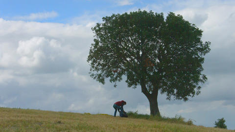 Silhouette of guy sitting under tree, tourist with heavy rucksack continues trip Footage