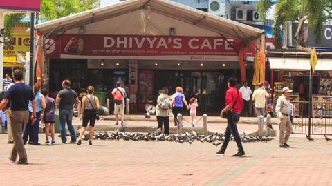 Tourists Walk Around Pigeon Flock by Cafe near Batu Caves Footage
