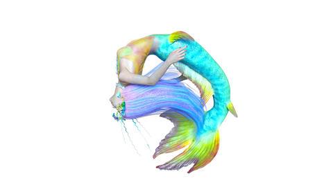 Mermaid Animation