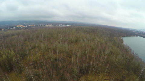 Aerial shot, forest with naked trees in autumn, spring, hunting, fishing season Footage