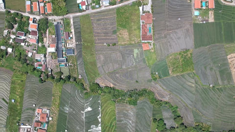 a drone fly over Canggu from above in sunny weather visible red roofs, green Live Action