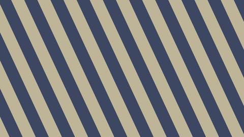 Diagonal-stripes-D-Dark blue-gray Animation