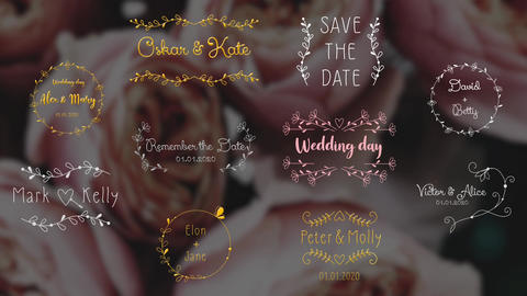 Wedding Day Titles Motion Graphics Template