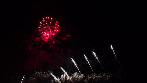 Colourful Fireworks in night sky, isolated background Live Action
