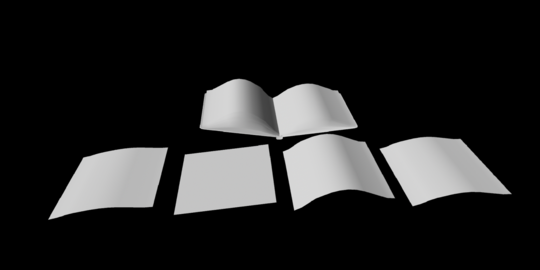 Open Book Paper Pieces untextured 3Dモデル