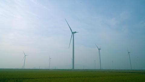 Wind Generator five ライブ動画