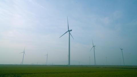 Wind Generator five, ライブ動画