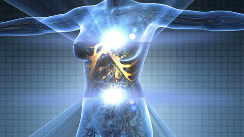science anatomy scan of human body in x-ray with glow skeleton bones on blue Animation