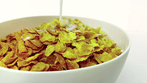 cereal corn flakes falling down in a bowl pouring with milk on white background, concept of diet Live Action