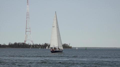 Annapolis Naval Academy Sailing sailboat Midshipmen... Stock Video Footage