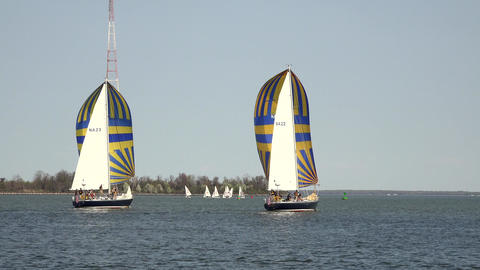 Annapolis Naval Academy Sailing sailboats Midshipmen 4K 052 Footage