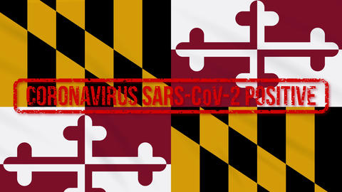 Maryland US state swaying flag stamped with positive response to COVID-19, loop Animation