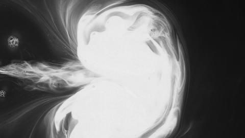 White paint stream in water, ink cloud, abstract movements. White dye on a black Live Action
