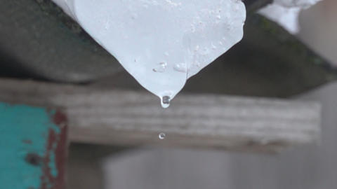 Macro icicle and spring drops Live Action