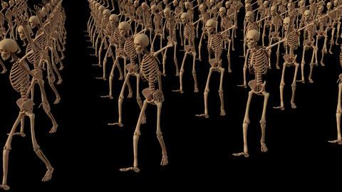 dancing skeleton skeletals, animation, transparent background, loop Live Action
