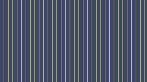 Diagonal-stripes-G-Dark blue-gray Animation