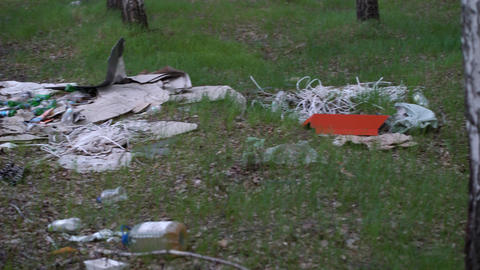 Footage Forest Pollution. Dump Garbage in Woods GIF