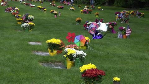 Cemetery Memorial Day flowers happy birthday 4K 010 Footage