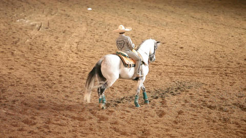 Charro cowboy and horse segments P HD Footage