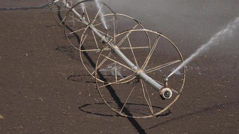 Farm irrigation sprinkler wheel line field 4K 009 Footage