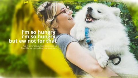 Beautiful Pets Slideshow Premiere Pro Template