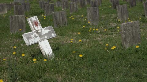 Fredericksburg Virginia Confederate cemetery graves cross 4K 013 Footage