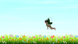 Fairy flying over the meadow, loop Animation