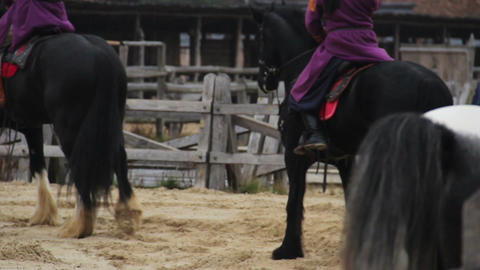 Men wearing medieval suits riding pedigree horses, reenacting historic events Footage