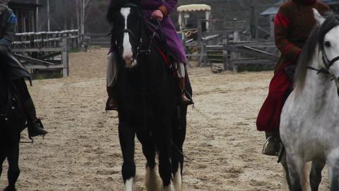 Many horsemen wearing medieval royal servant suits taming pedigree horses Footage