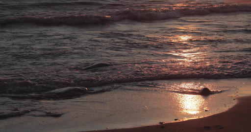 The sandy coast with a tidal wave at sunset, stones, sand, waves, nobody, a Live Action