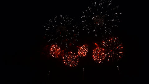 Various Fireworks in the night sky, isolated on black background Live Action