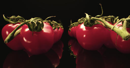 Tasty fresh red cocktail tomatoes super macro close-up with dark background unique high resolution Live Action