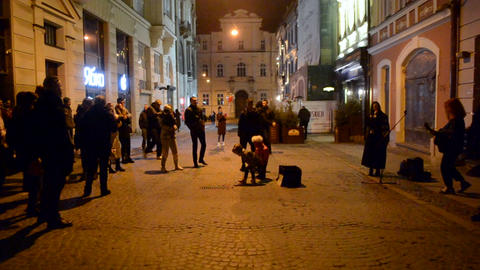 Street musicians sing on the street of a European city in the evening Live Action