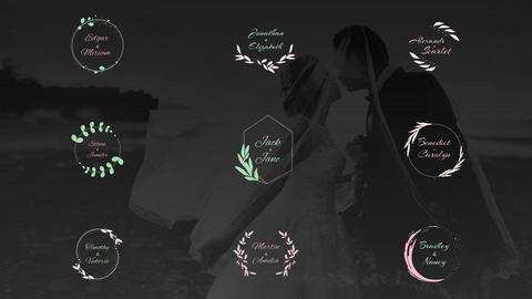Elegant Wedding Titles After Effects Template