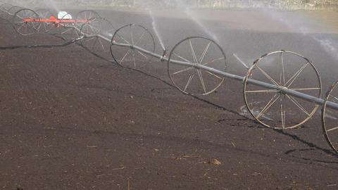 Irrigation water sprinkler agriculture farm field fast motion 4K 007 Footage