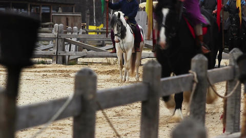 Parade of expensive horse breeds at medieval festival. Horse-riding, slow motion Footage