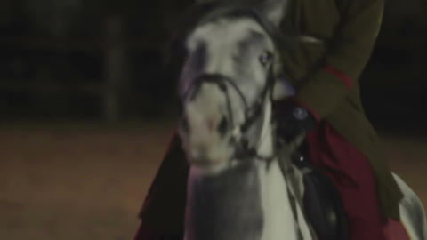 Envoy on a beautiful thoroughbred white horse riding on street , Middle Ages Footage