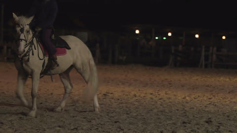 Male horse-rider, envoy arrives in the city. Middle Ages. Thoroughbred horse Footage