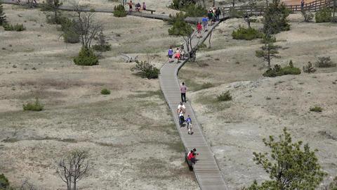 Mammoth Hot Springs tourists boardwalk from Upper Terrace 4K Footage